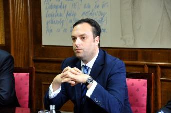 Slika D.Cerovic